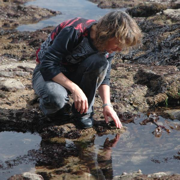 Siddy rockpooling at Beer beach