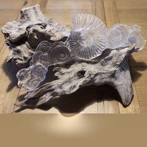 Sandcast Ammonite Sculpture on bogwood